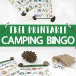 Free Printable Camping Bingo Cards   A Fun Camping Party Or