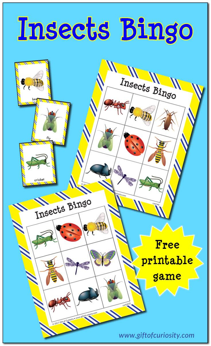 Insects Bingo {Free Printable} | Preschool Bug Theme, Insect