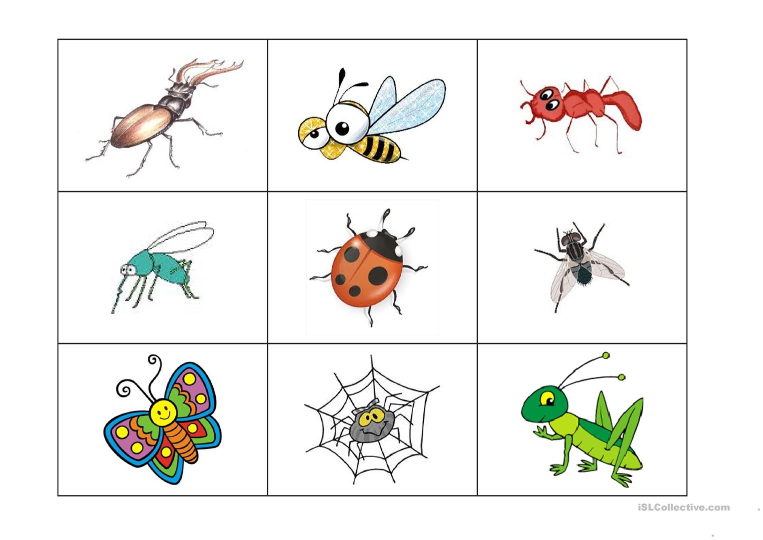 Insects Bingo Game - English Esl Worksheets For Distance