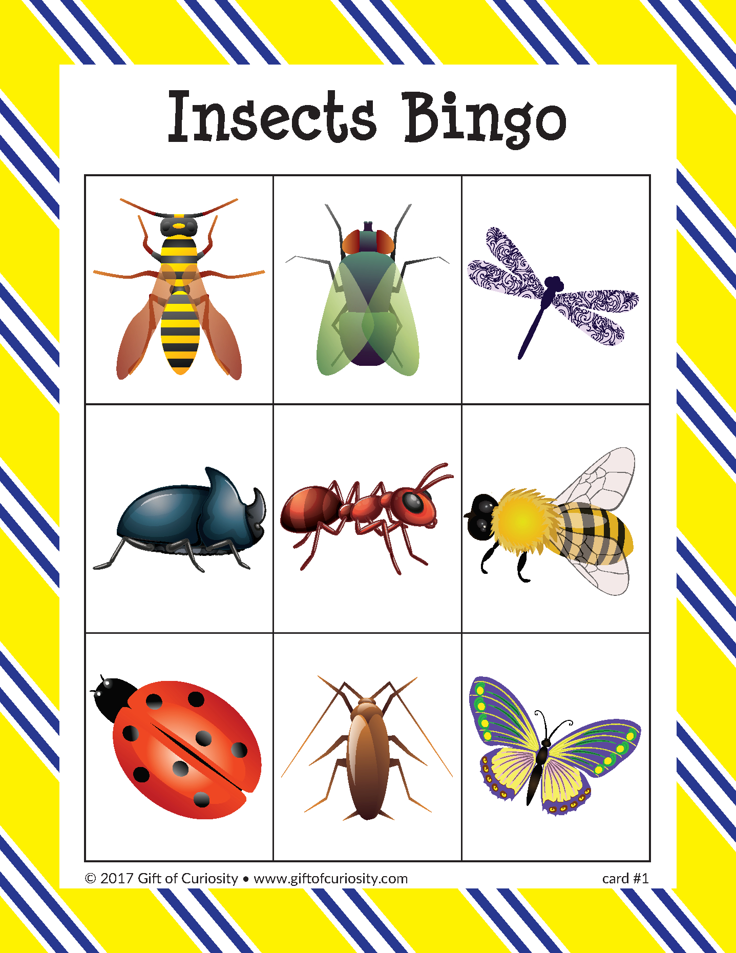 Insects Bingo | Insects, Bug Activities, Preschool Math Games