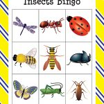 Insects Bingo | Insects, Preschool Math Games, Bingo
