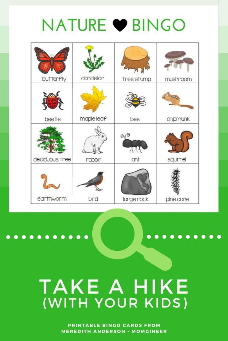 Printable Nature Bingo Cards