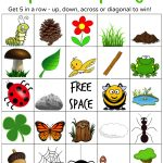 Nature Hunt Bingo | Nature Hunt, Bingo, Bingo For Kids