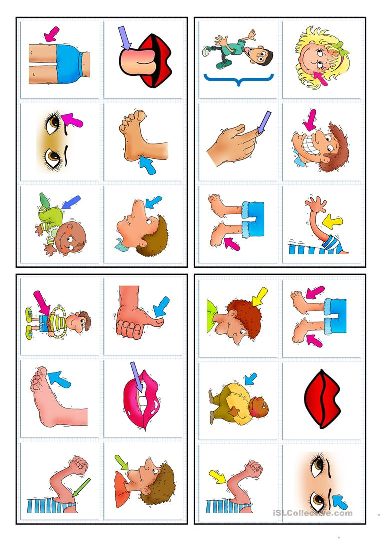24 Bingo Cards - Parts Of The Body - English Esl Worksheets