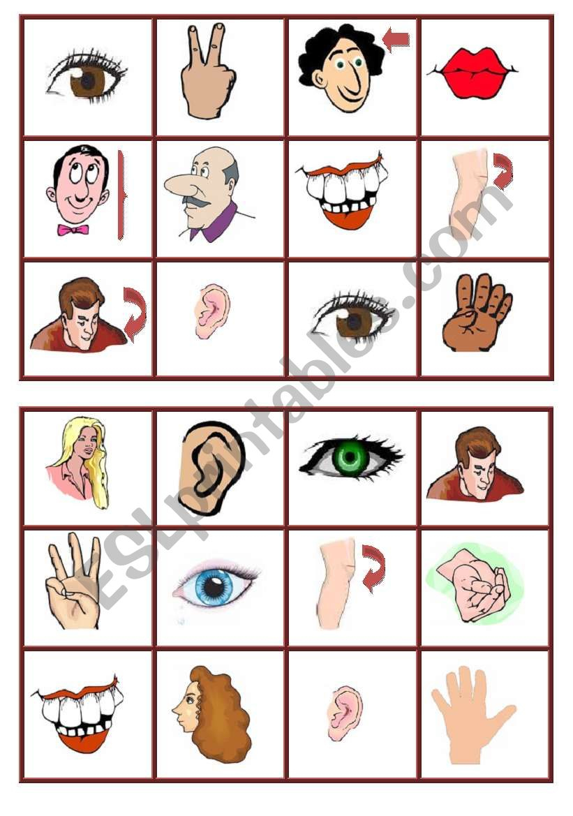 Body Parts Bingo-1 - Esl Worksheetagunda