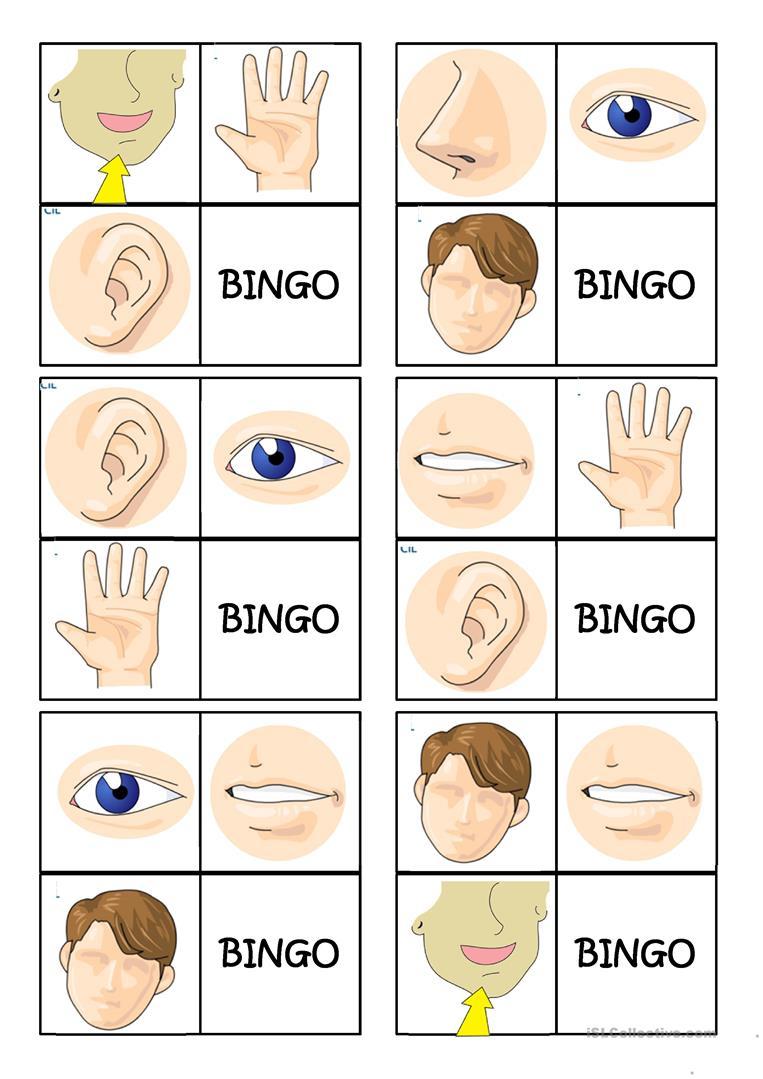 Body Parts Bingo - English Esl Powerpoints For Distance