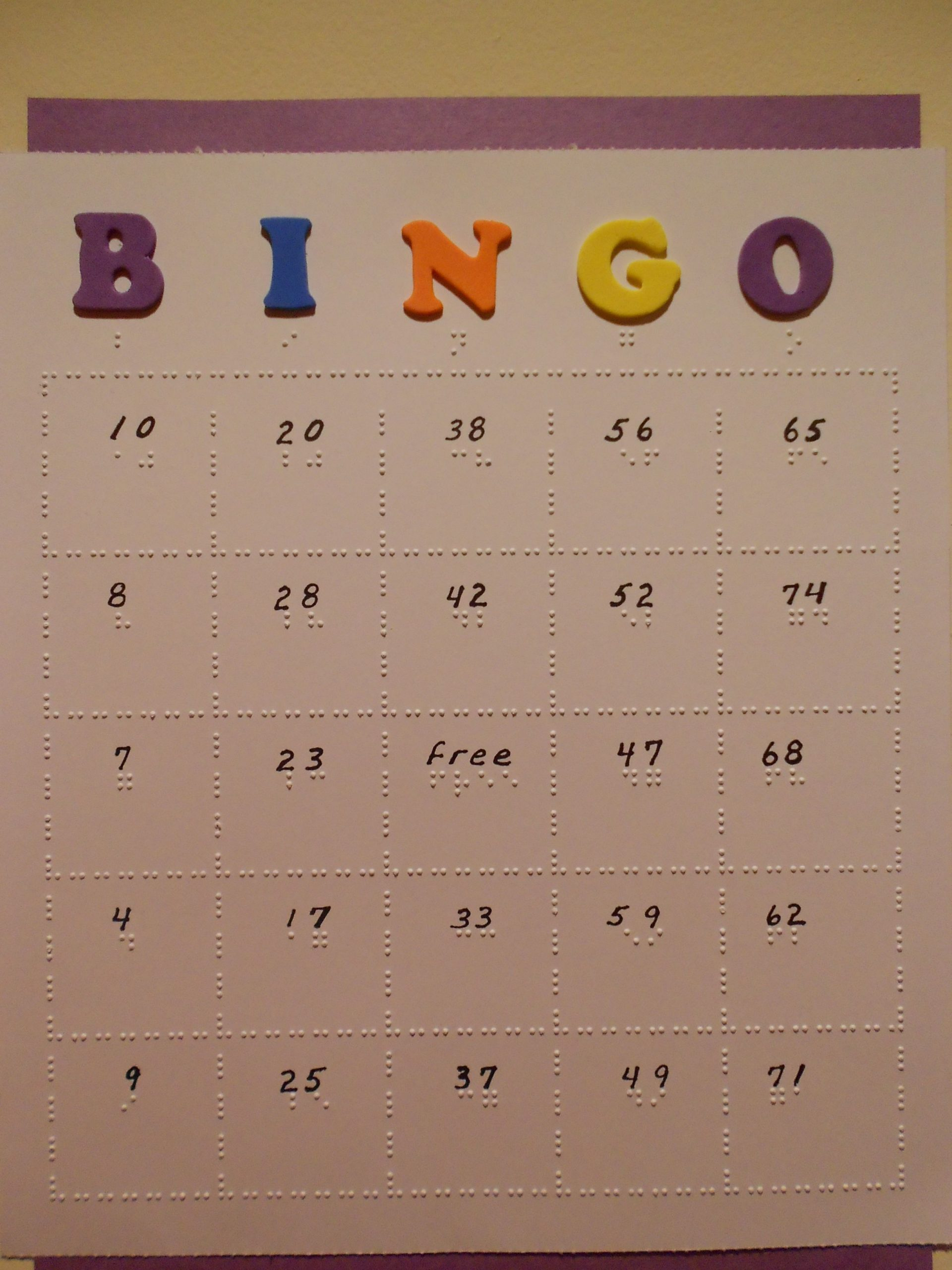 Braille Bingo Cards: Can Be Individually Adapted For The