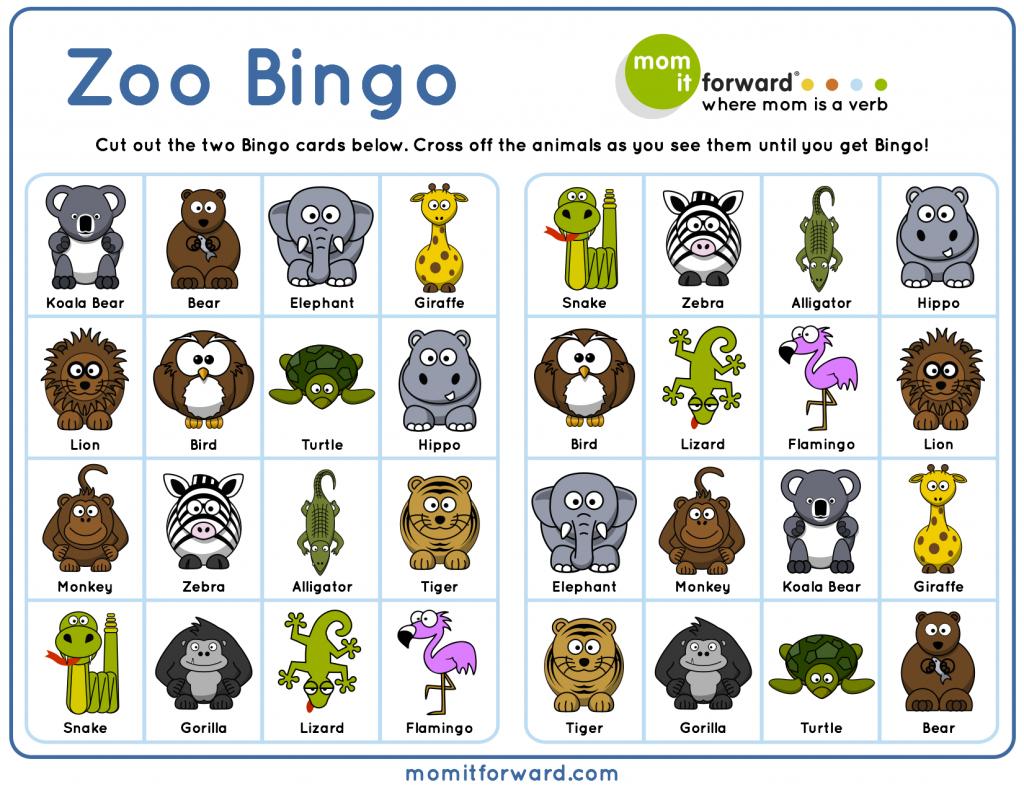 Family Activity: Zoo In The Winter | Zoo Activities