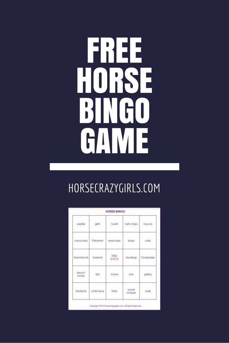 Horse Bingo Game | Horses, Horse Games, Camping Crafts