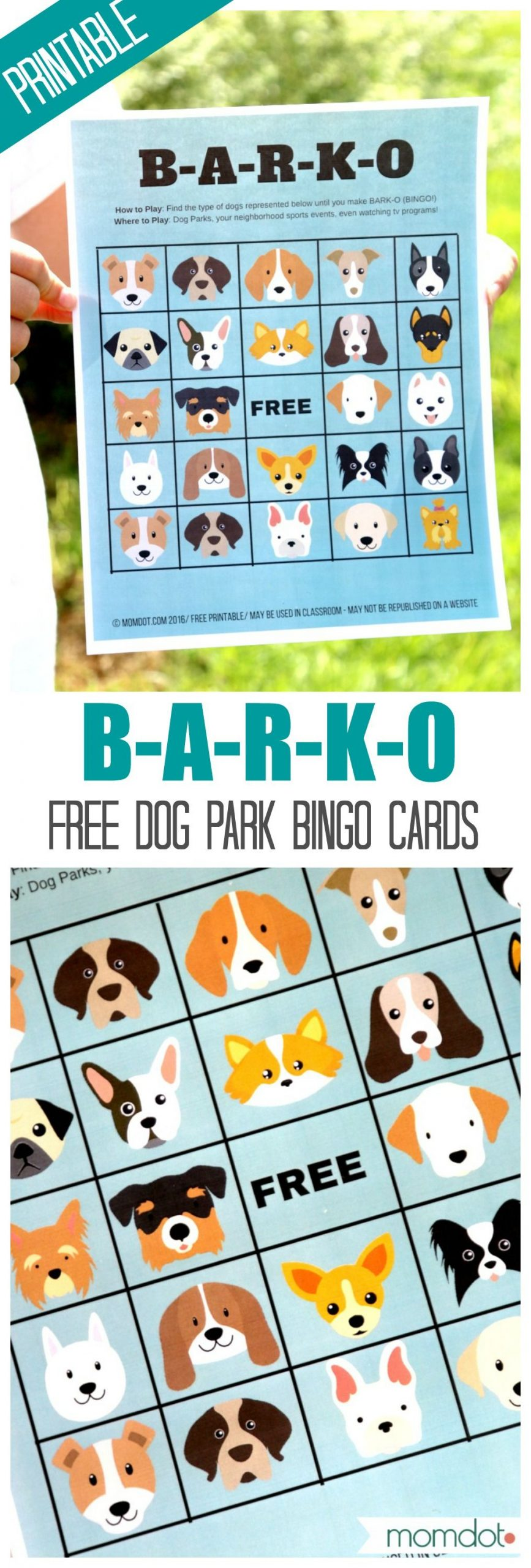 How To Start A Dog Park   Birthday Party Games For Kids, Dog