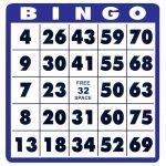 Low Vision Bingo Cards  10 Cards