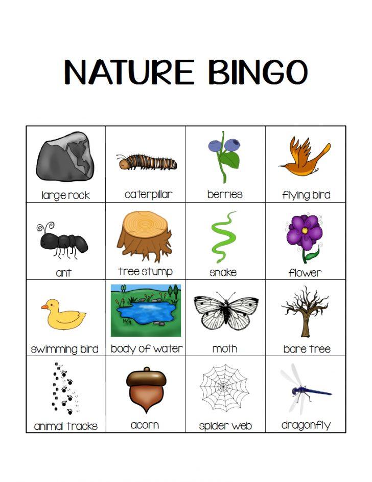 Nature Bingo Printable Cards
