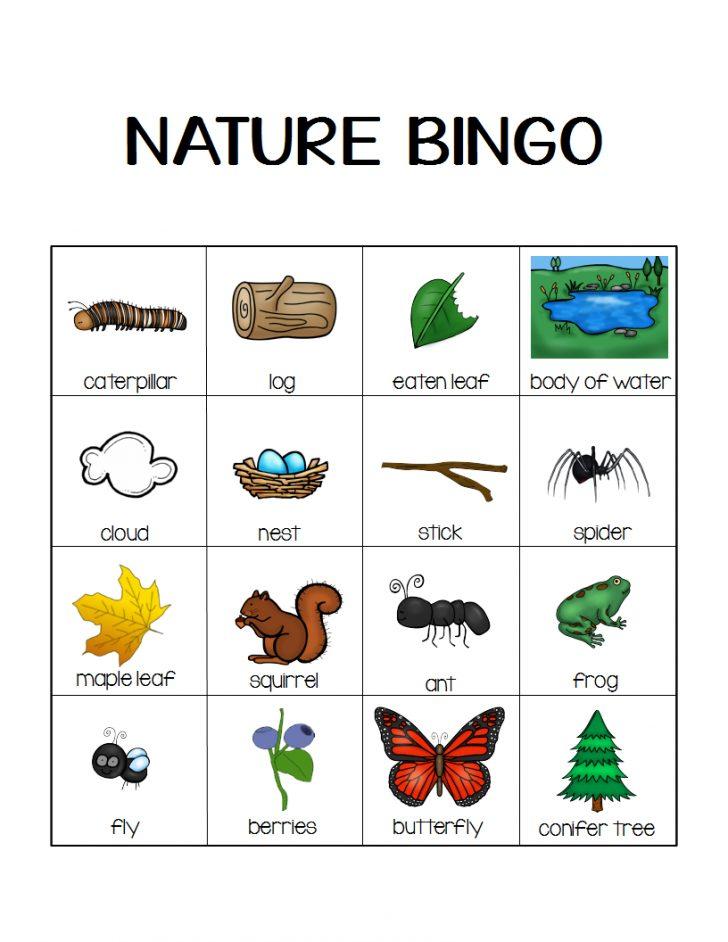 Nature Bingo Cards Printable