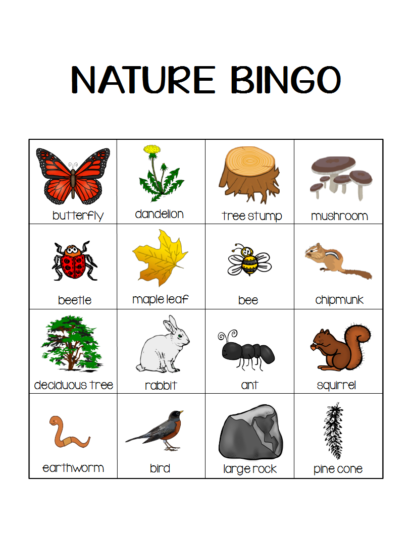 Nature Bingo Printable Activity - Take A Hike With Your Kids
