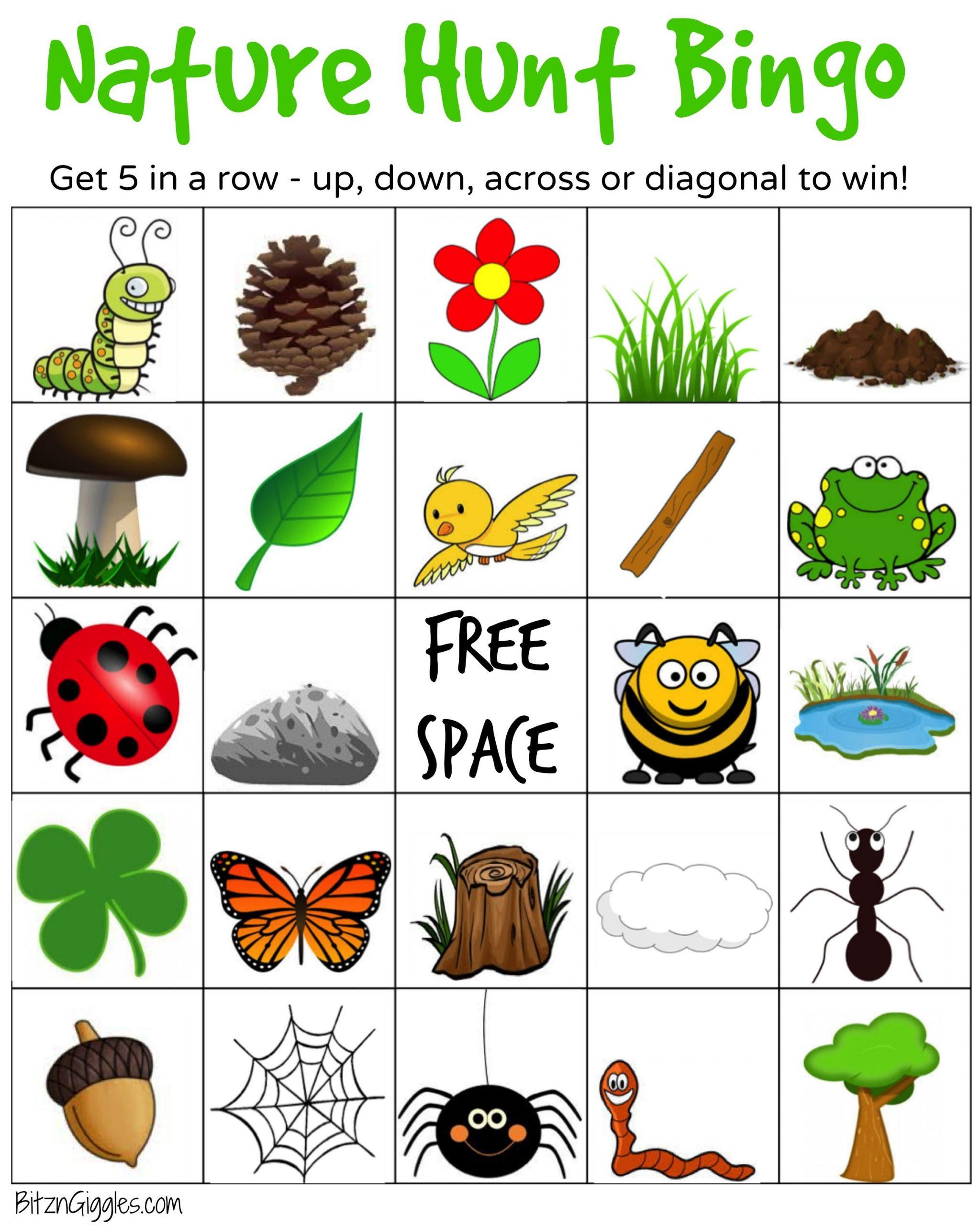 Nature Hunt Bingo   Nature Hunt, Bingo, Bingo For Kids